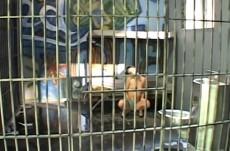 prison-salopes